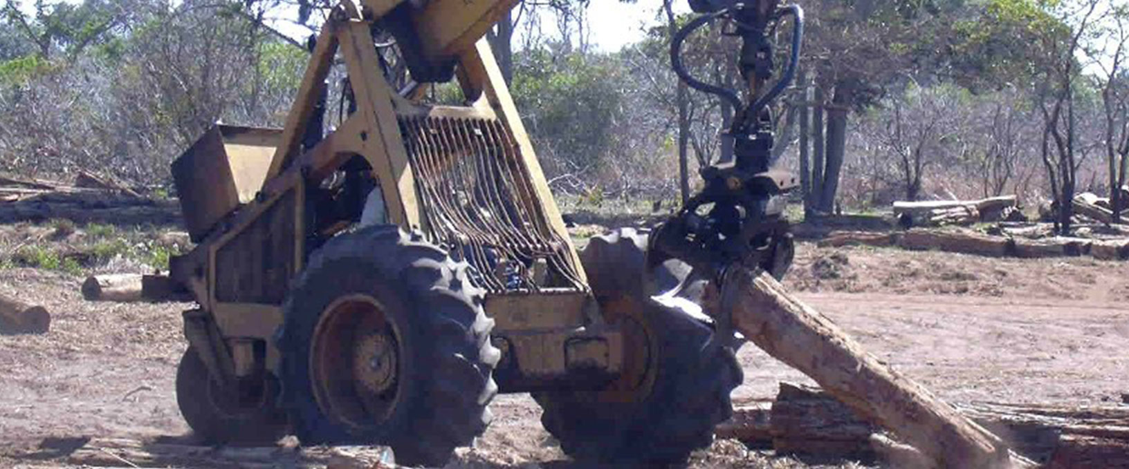 02. Grading of logs at collection point