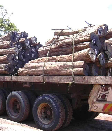05. Long distance road transport 40 tons truck