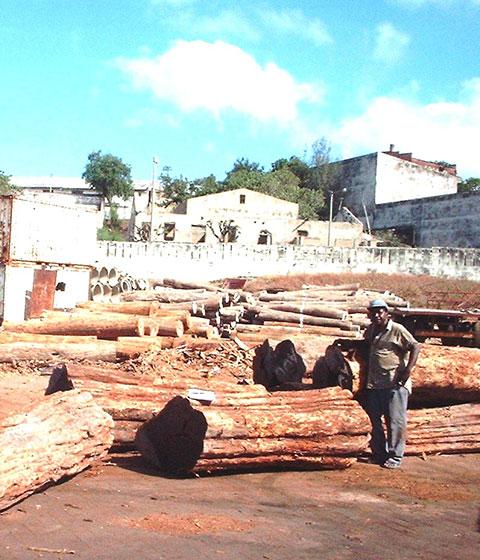 07. A Grade logs at harbour prior to loading