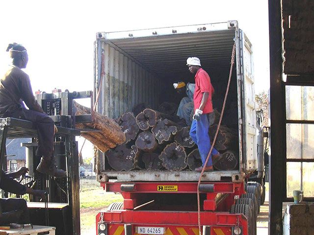 09. Unloading of logs at ProSono saw mill