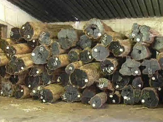 10. Grading of logs ABW AA