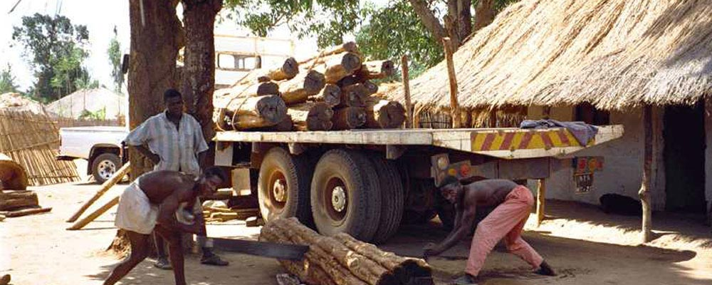 loading African wood