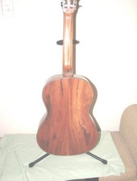 Mopane guitar back Canal's first guitar